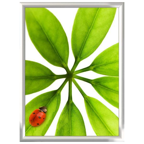 18x24 Snap Poster Frame - 1 inch Silver Mitred Profile